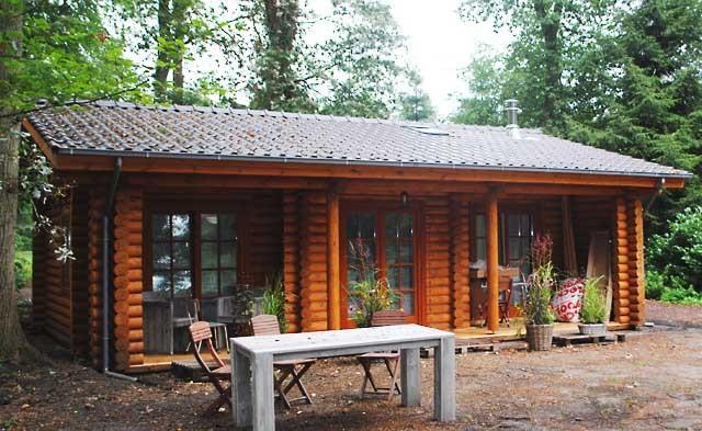 Una piccola casa di campagna di tronchi secchi 61m2 for Log cabin plan con soppalco
